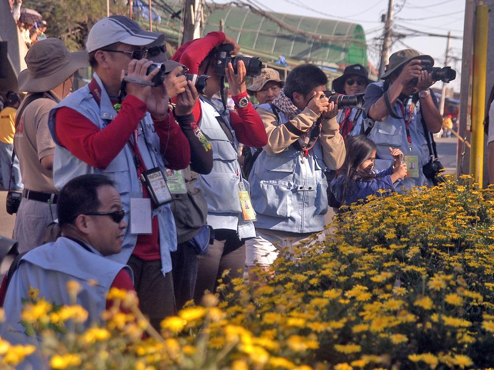 Media_flowers1